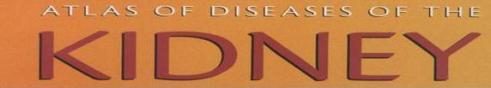 atlas-of-diseases-of-the-kidney.JPG