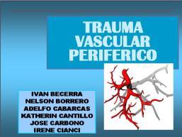 tx-vascular2.jpg